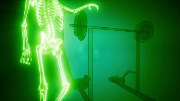 Thumbnail for Man in Gym Room with Visible Bones