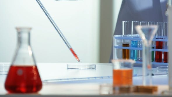 Thumbnail for Lab Technician Adds a Few Drops of a Red Chemical From a Pipette To a Petri Dish