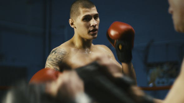 Thumbnail for Serious Tattooed Boxer Training with Coach