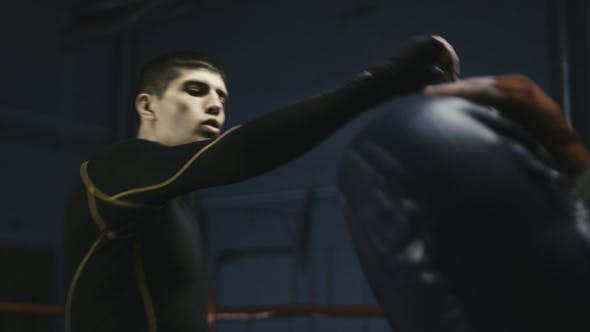 Thumbnail for Athletic Man Kicking Punching Bag