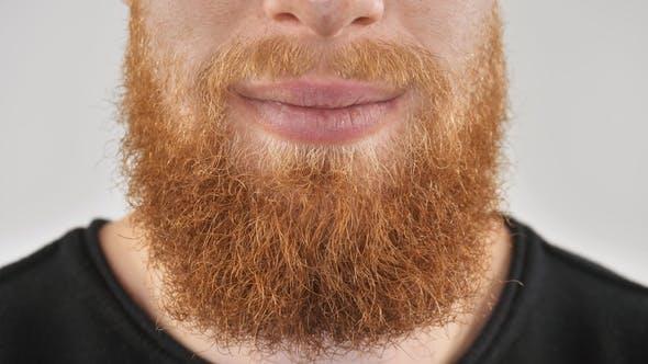 Thumbnail for Happy Bearded Guy