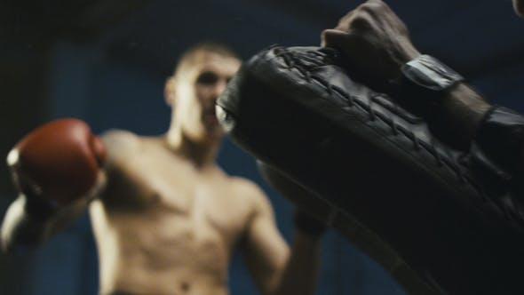 Thumbnail for Athletic Man Kicking Punching Bag