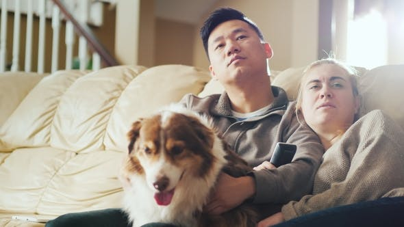 Thumbnail for Young Multi-ethnic Couple Watching TV. Sit on the Couch, Beside Them Their Dog