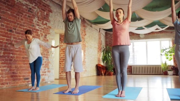 Thumbnail for Group of People Making Yoga Exercises in Gym 39