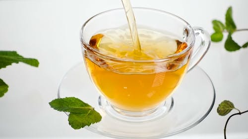 Mint Tea with Leaves Directly Above, White Background