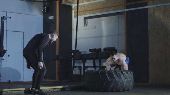 Thumbnail for Man Exercising with Tyre During Personal Training