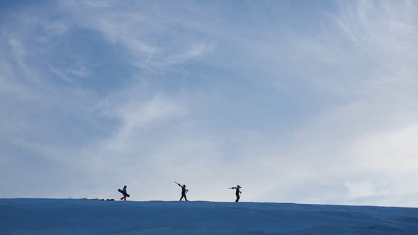 Thumbnail for Walking Snow