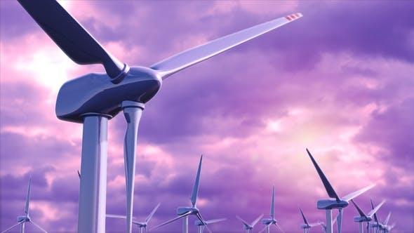 Wind Generators Farm Against a Purple Sky Loop