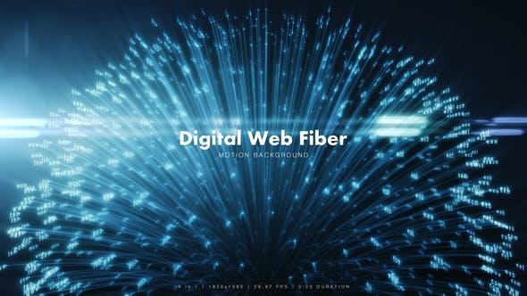 Thumbnail for Digital Web Fiber