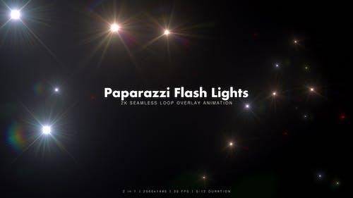 Paparazzi Flash Lights 4