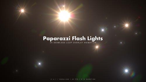 Paparazzi Flash Lights 3