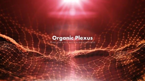 Thumbnail for Organic Plexus 2