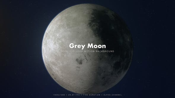 Thumbnail for Grey Moon 360 Degrees Rotating