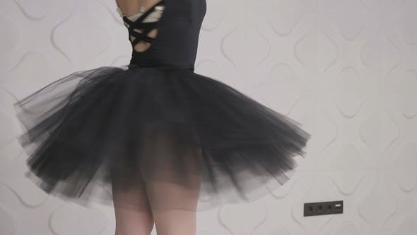 Thumbnail for Graceful Girl Practicing Ballet in the Studio