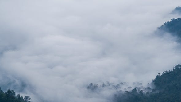 Thumbnail for Fog Moving At Mountain