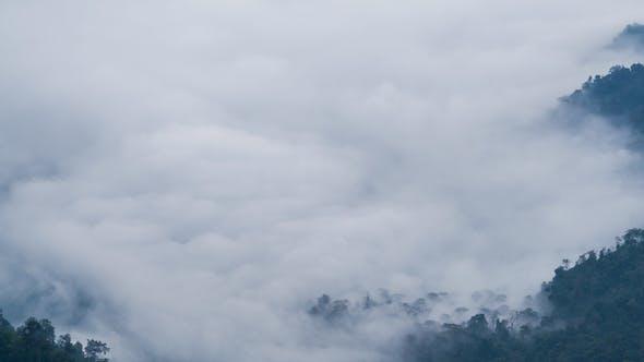 Thumbnail for Fog At Mountain