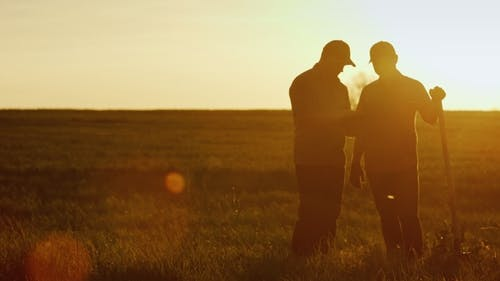 Two Farmers Talk in the Field, Use a Tablet. Beautiful Sunset, Silhouettes of Two Men Seen