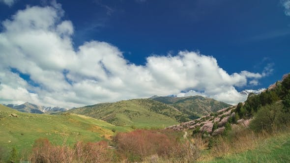 Cover Image for Spanish Spring Mountains with Flowering Trees and Beautiful Clouds in