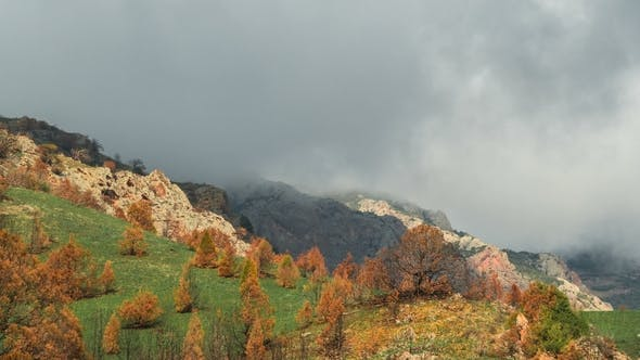 Cover Image for Mountain Ridge with Cloudy Sky, Covered with Grass and Trees with Orange Leaves in