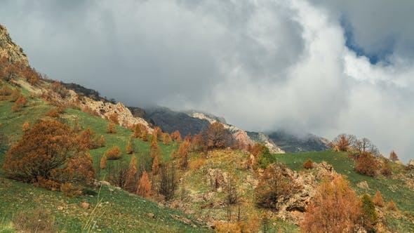 Gebirgskamm mit dicken Wolken, bedeckt mit frischem grünem Gras und Bäumen mit Orangenblättern in