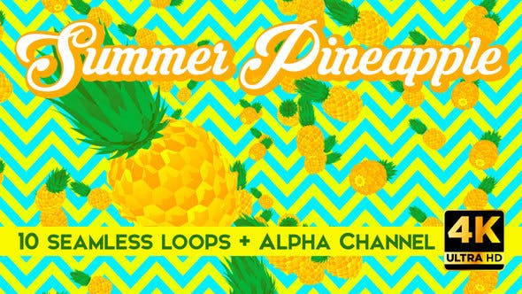 Thumbnail for Summer Pineapple Vj Loops Pack