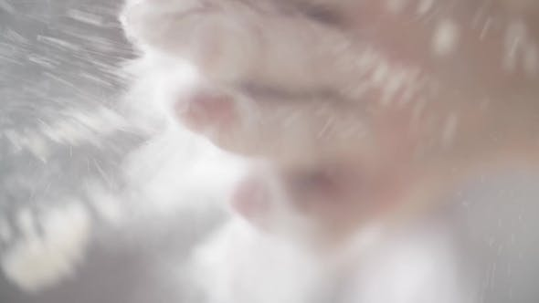 Thumbnail for Chef Clapping His Hands Filled with Flour