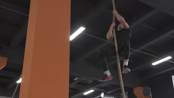 Cover Image for Fitness Man Doing Rope Climb Exercise in Gym