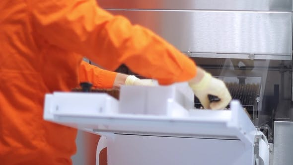 Thumbnail for Pharmaceutical Worker Loading Medical Vials at Pharmaceutical Packaging Machine