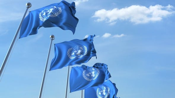 Cover Image for Waving Flags of the United Nations UN Against the Sky