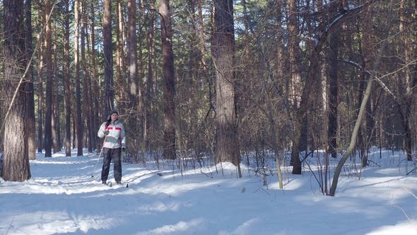 Thumbnail for a Woman Skiing in a Forest in Northern Europe. Healthy Lifestyle