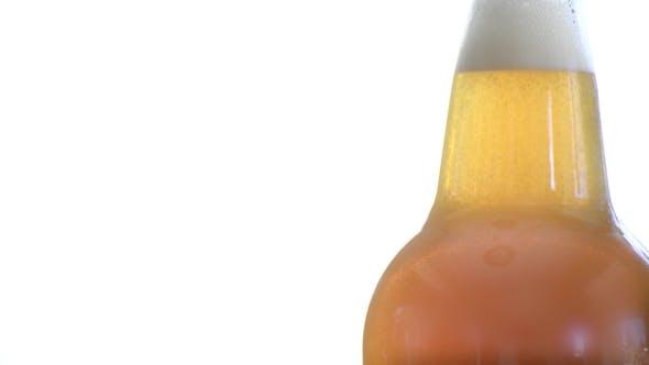 Thumbnail for Fresh Bottle of Plain Kombucha