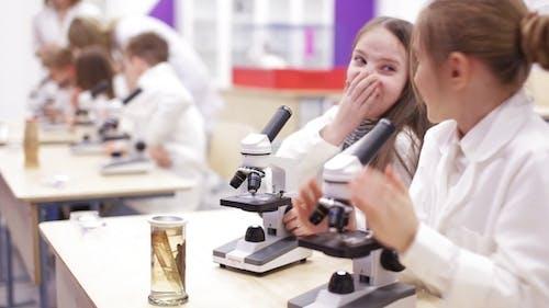 Moderne Biologie Unterricht in der Grundschule
