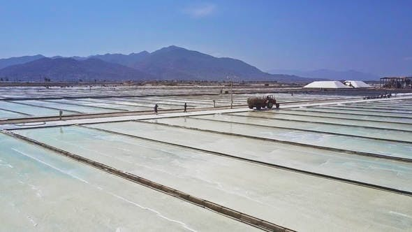 Huge Plantations Produce Salt Evaporating Seawater
