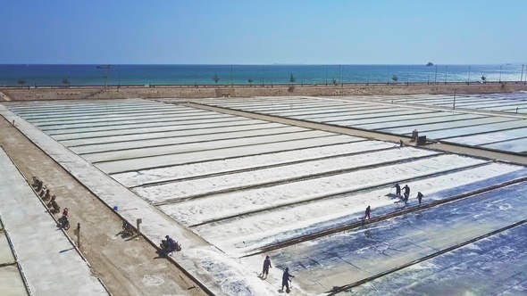 Thumbnail for Local Workers Rake Salt on Plantations by Ocean