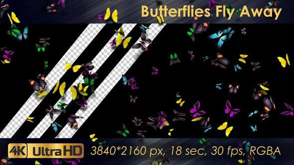Thumbnail for Butterflies Fly Away