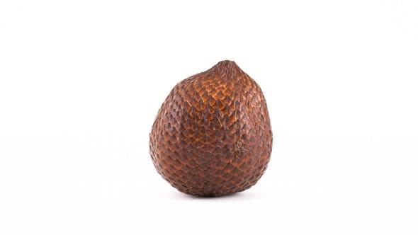 Thumbnail for of One Salak Fruit Rotating on the Turntable. Isolated on White. . Loopable.