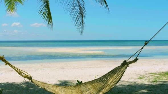 Thumbnail for Beautiful Exotic Beach with Empty Straw Hammock between Palm Trees