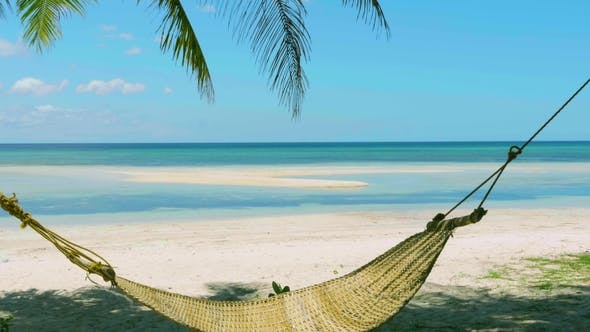 Thumbnail for Straw Hammock Swings in the Shadow of Palm on Tropical Beach By Azure Sea, Wind Blows Through Leaves
