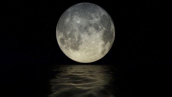 Thumbnail for Moonlight
