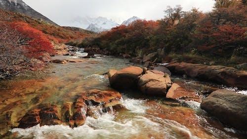 Mountain River and Mount Fitz Roy, Patagonia