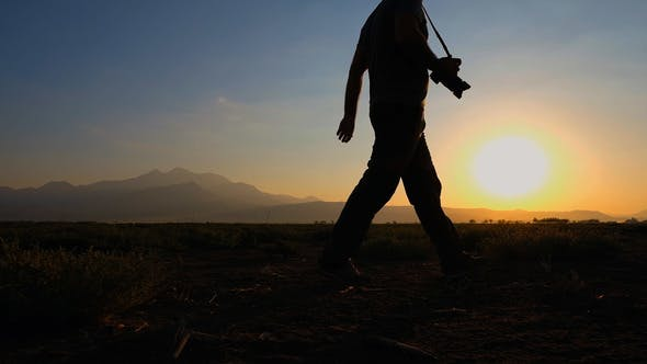 Cover Image for Sunset Walking