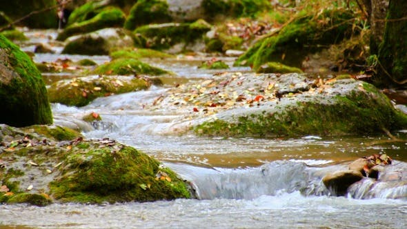 Thumbnail for Winding Creek Cascades in Fall