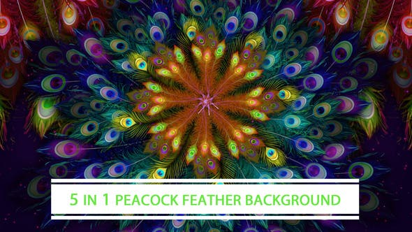 Thumbnail for Peacock Feather Background