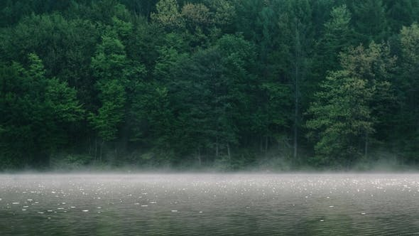 Fog Over the River on a Morning Summer Day. Beautiful Scenery on the Background of Water with Grass