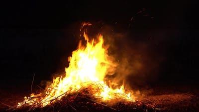 Campfire Camp Fire Summer Burning Fire.