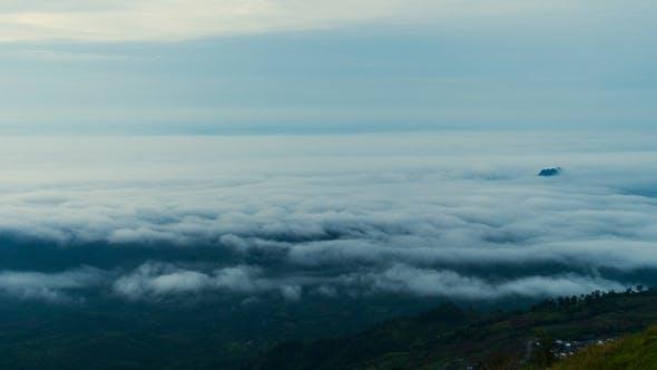 Thumbnail for Fog Above Forest