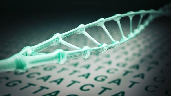 Thumbnail for DNA Spiral Rotating Loop
