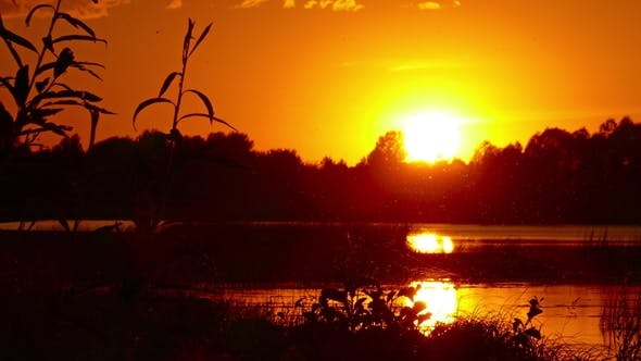 Thumbnail for Landscape with Sunset Over Lake,