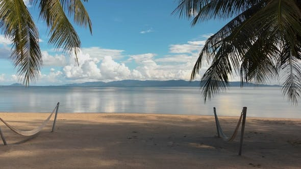 Thumbnail for Beach with Palm Trees To the Sea in Luxury Resort