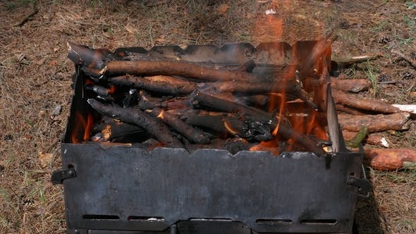 Thumbnail for Brazier Barbecue Grill in Forest